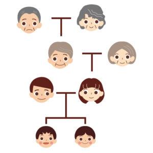 法定相続人になる人とその順位、相続分の割合についての具体例