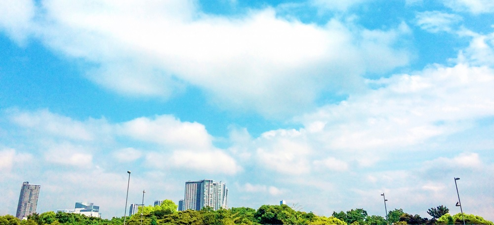 地積規模の大きな宅地の評価とは?